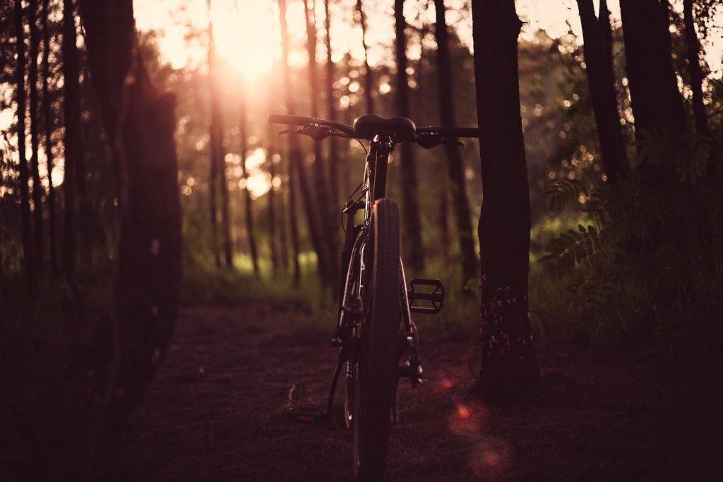Nachhaltige Fahrradhersteller. Wie nachhaltig sind Markenfahrräder?