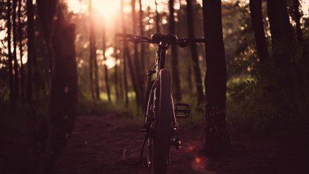 nachhaltige fahrradhersteller