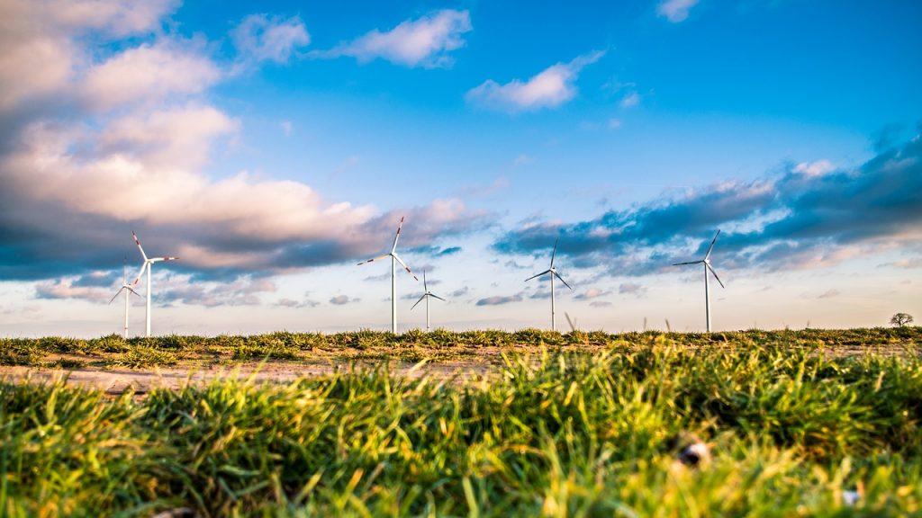 Nachhaltiger Ökostrom | 8 Anbieter im Vergleich