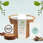 nachhaltige geschenke: baum anzuchtset