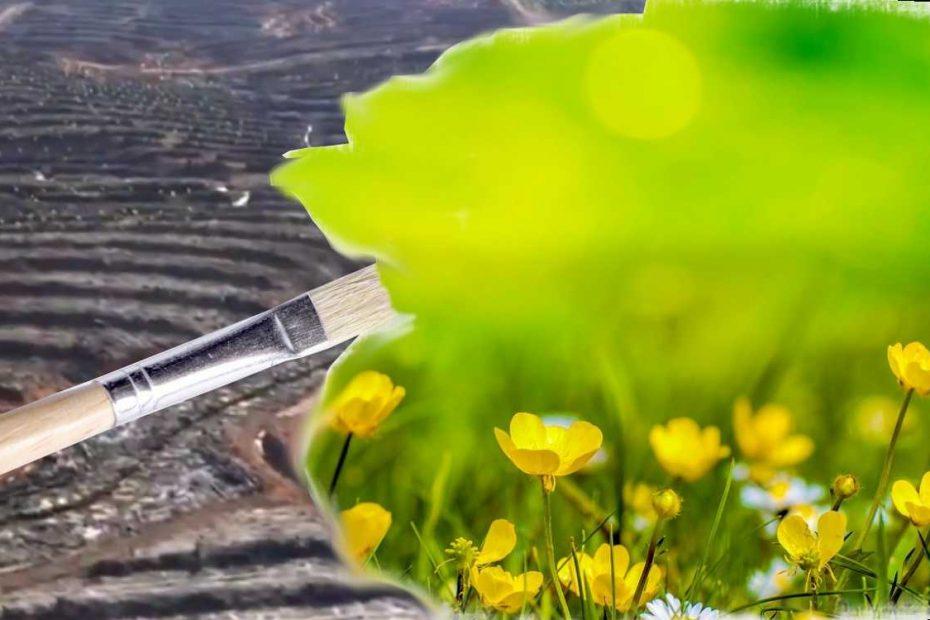 greenwashing beispiele