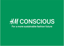 H&M Greenwashing