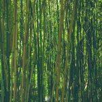 bambusfaser textillien